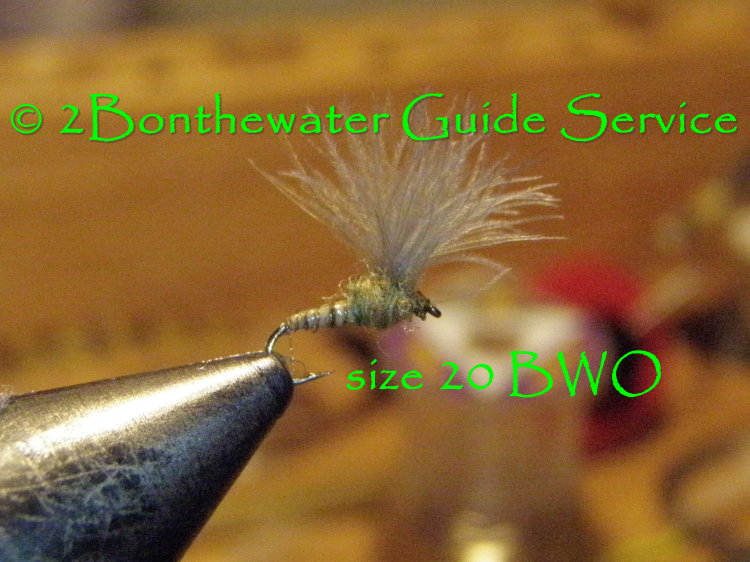 Blue Wing Olive, BWO cdc dry fly