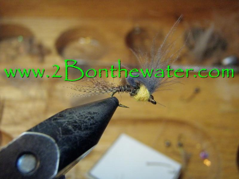 sulphur emerger, CDC loop wing emerger, CDC