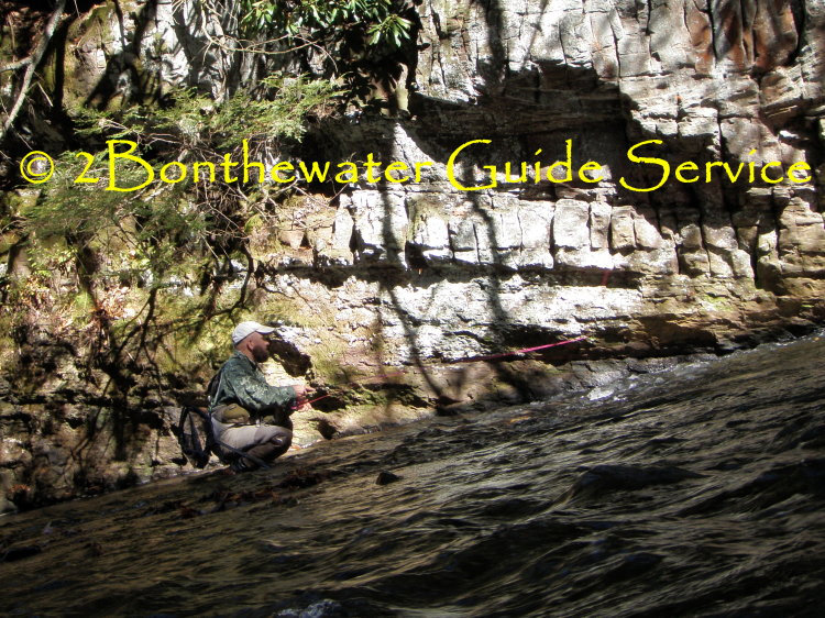 Guide Service, Wild Trout Fly Fishing, Vinny Dick Jr., fly fishing