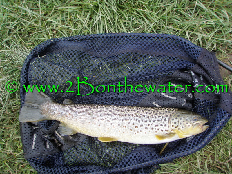 2bonthewater Guide Service 2016 December 2 2016 This Is