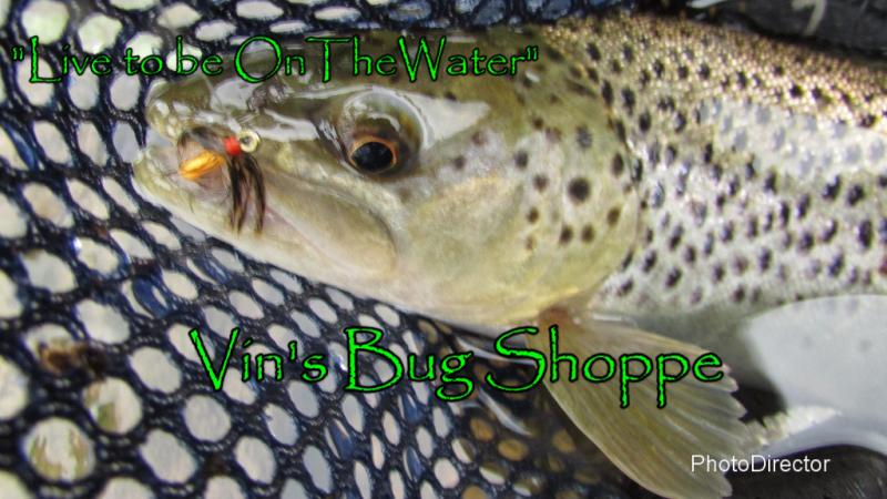 brown trout, PFBC stocked trout, pellethead, soft-hackle fly, orange and grouse