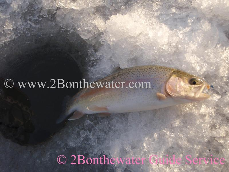 2bonthewater Guide Service Reports December 22 2010